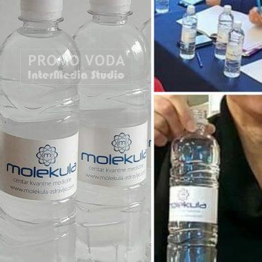 Promo voda, Molekula Centar Kvantne Medicine